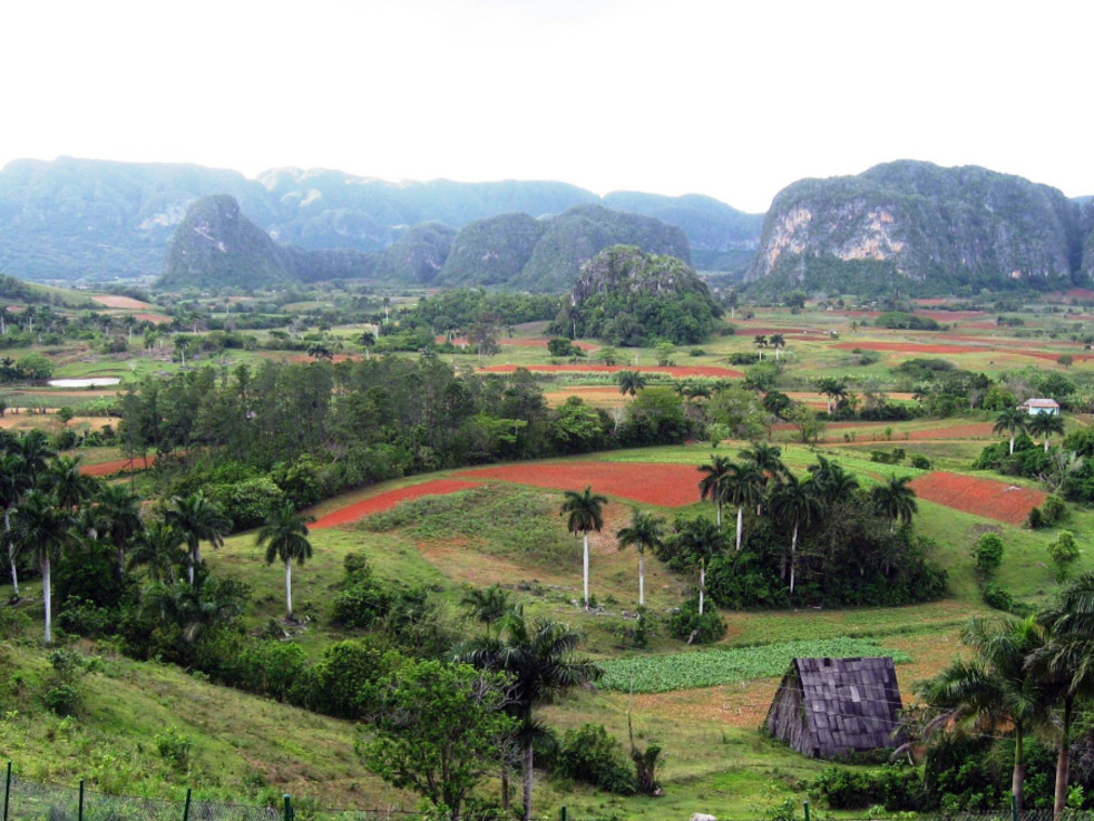 Vuelta Abajo is a district in the Pinar del Río Province ...